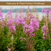 february-8-flash-fiction-challenge.png