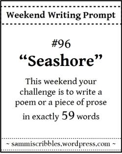 wk-96-seashore.jpg